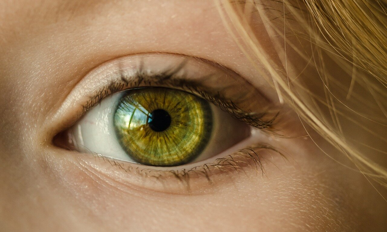 Borówka na poprawę wzroku. Tabletki z borówki na oczy